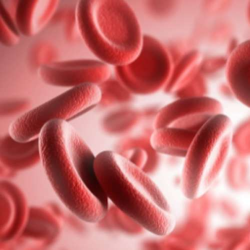 Железодефицитная анемия диета